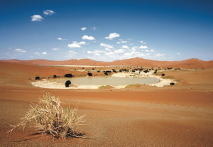Eine Wüste - Etosha Flugsafari